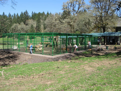 Rhino Exotic Animal Enclosure 42'W x 62'D x 10'H Powder Coated Cage