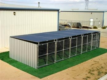 Rhino 5-Run Shed Row Style Dog Kennels with Roof Shelters 6'X12' for French Bulldogs