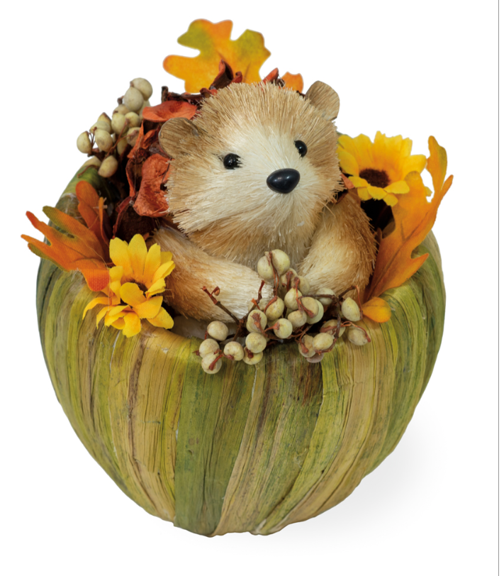 Honey Hedgehog in Pumpkin