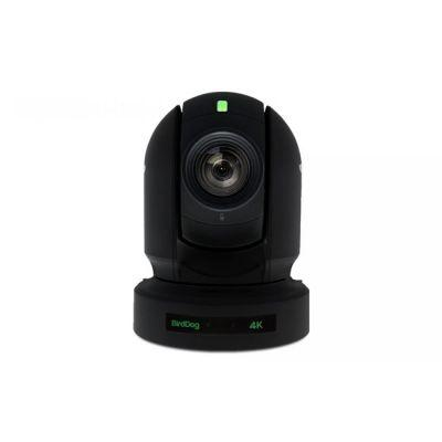 BirdDog P400 - 4K 10-Bit Full NDI with Sony Sensor (Black)