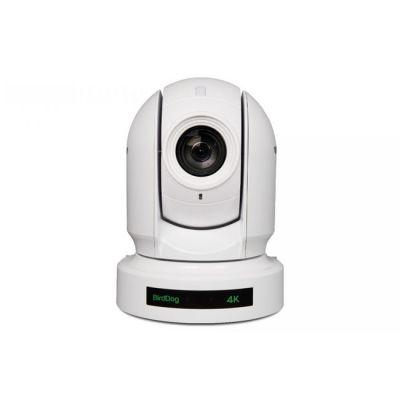 BirdDog P400 - 4K 10-Bit Full NDI with Sony Sensor (White)