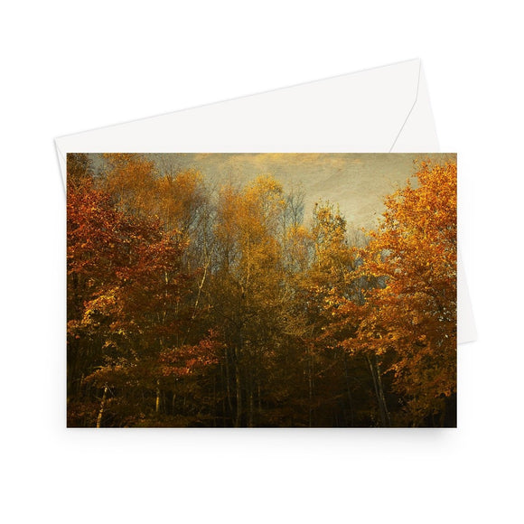 'Autumn Dream' - High quality greeting card featuring my photograph of a Kent woodland in the prime of its breathtaking autumn colour. Printed on high-quality 330gsm Fedrigoni card. Envelope supplied.