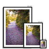 'Camellia Trail' -  Framed & Mounted Print