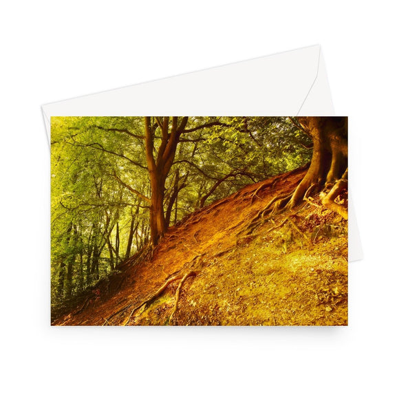 'Breathing Redhill' - High quality greeting card featuring my photograph of a steep, autumn russet hillside with exposed tree roots and a vivid green canopy above. Printed on high-quality 330gsm Fedrigoni card. Envelope supplied.