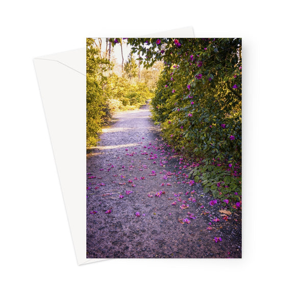 'Camellia Trail' -  Greeting Card
