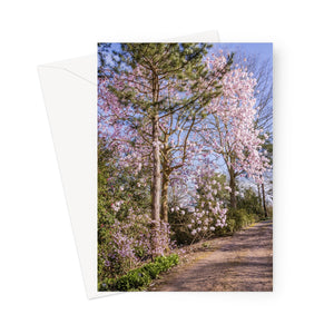 'Magnificent Magnolia Card' -  Greeting Card