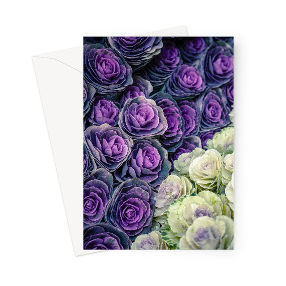 'Cabbage Patch' Greeting Card
