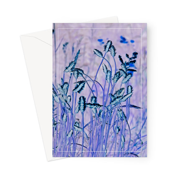 'Blue Grass' -  Greeting Card