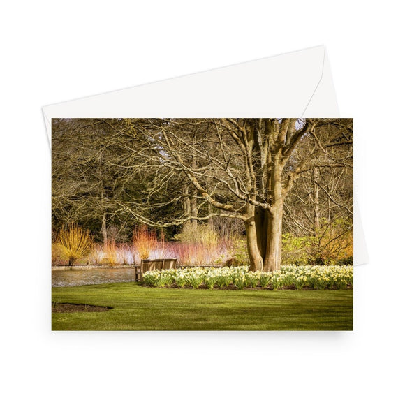 'Winter Walk' - High quality greeting card featuring my photograph of the wonderful Winter Walk at RHS Wisley. Printed on high-quality 330gsm Fedrigoni card. Envelope supplied.