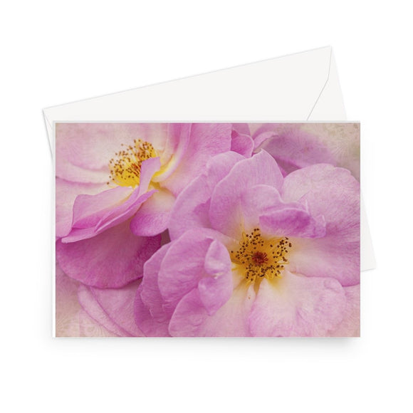 'In the Pink' - High quality greeting card featuring my close up photograph of pink roses. Printed on high-quality 330gsm Fedrigoni card. Envelope supplied.