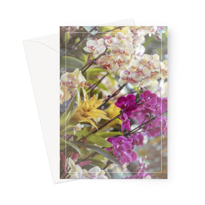 'Orchid Extravaganza' -  Greeting Card