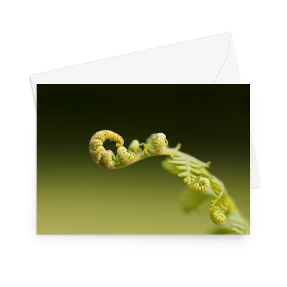 'Best Fronds Forever' - High quality greeting card featuring my photograph of unfurling bracken, reaching out invitingly. Printed on high-quality 330gsm Fedrigoni card. Envelope supplied.