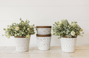 Large White Planters With Natural Rim [Multiple Styles]