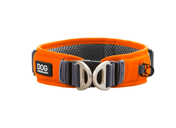Collier DOG Copenhagen Urban Explorer - Pawzitive