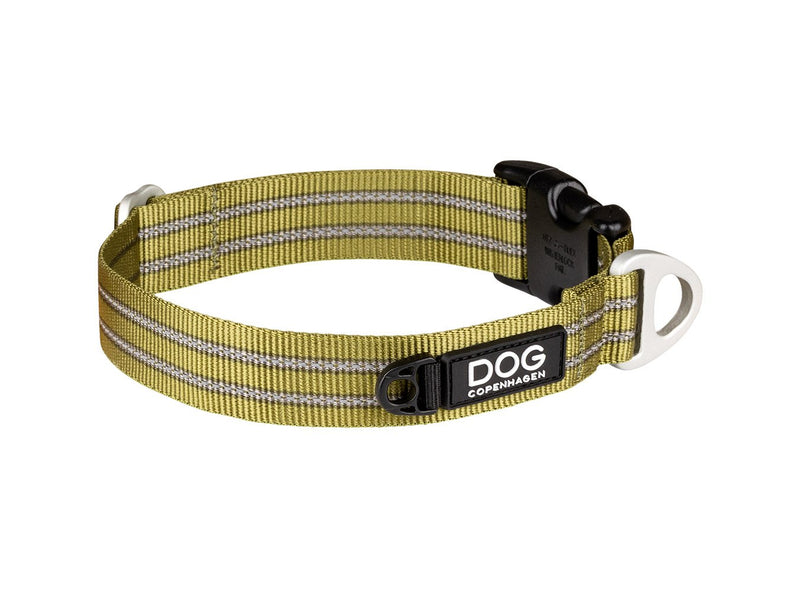 COLLIER DOG COPENHAGEN URBAN STYLE