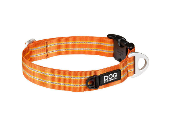 COLLIER DOG COPENHAGEN URBAN STYLE - Pawzitive
