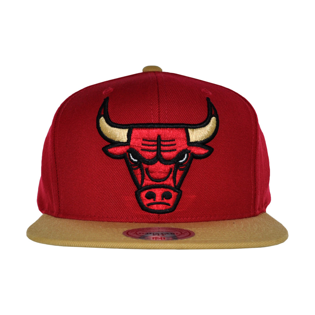 MEN'S NBA CHICAGO BULLS SNAPBACK