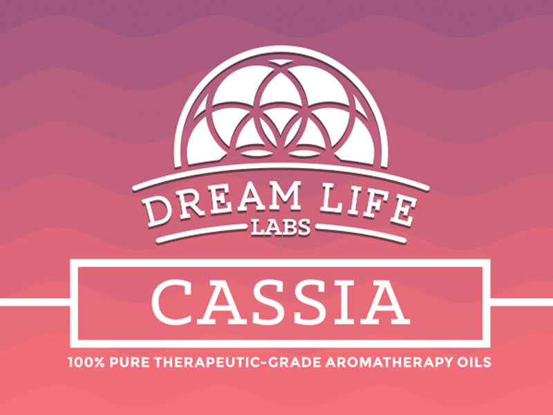 Cassia Essential Oil 15ml (0.5oz)