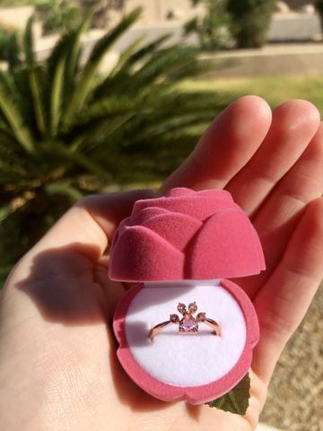 Cat Paw Ring + Rose Box