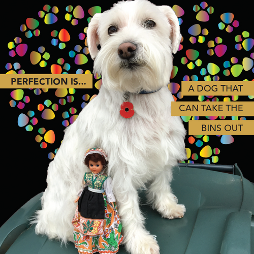 PERFECTION IS... - Doll Truths Gail Grisham funny greetings cards