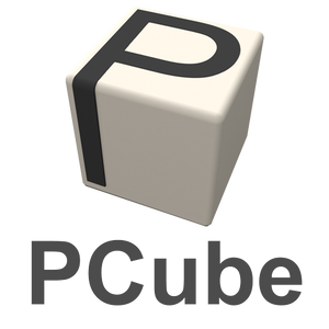 Technical Assistance - Half Day - PCube or WEB.