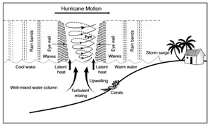 Hurricane diagram.png