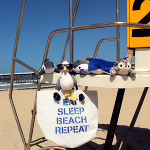 Shore Buddies with beach bag from recycled billboards