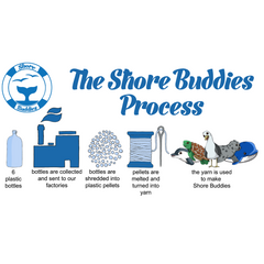 The Shore Buddies Process.png