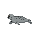 Shore Buddies Sammy the Seal.png