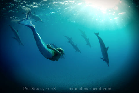 Hannah Fraser swimming as a mermaid with dolphins