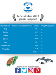 Shore Buddies helps you to calculate your plastic footprint.png