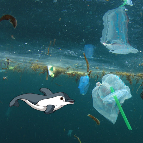 Finn swimming in the plastic ocean.png