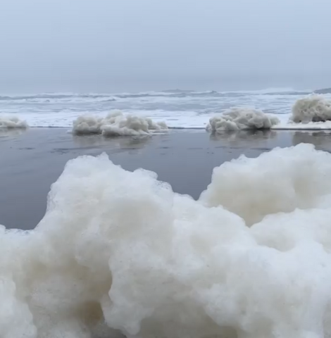 Instagram Photo of Sea Foam by Steve Peletz