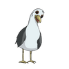Stephen Seagull Interview partner.png