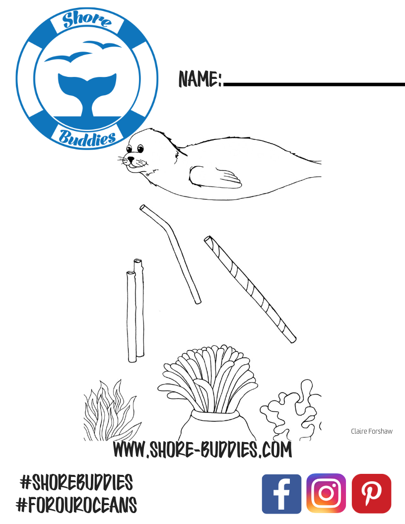 Shore Buddies Sammy the Seal coloring page 1