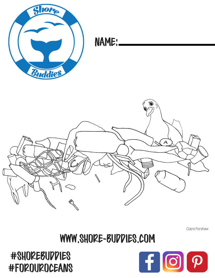 Stephen Seagull coloring page 1