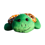 Shelly The Sea Turtle.png