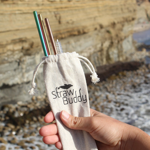 Straw Buddy Stainless Steel Straw Pack - 3x colorful stainless steel straws