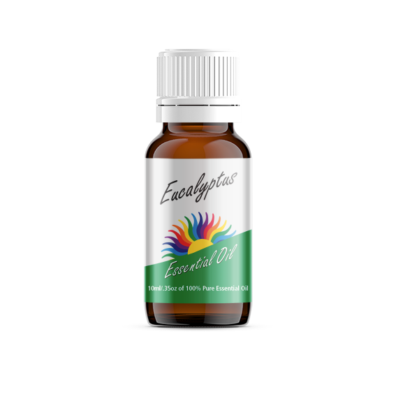 Eucalyptus Radiata Essential Oil