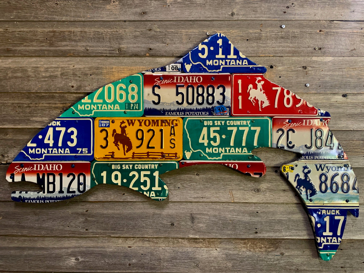 Large 4-Foot Mixed Western Trout License Plate Art