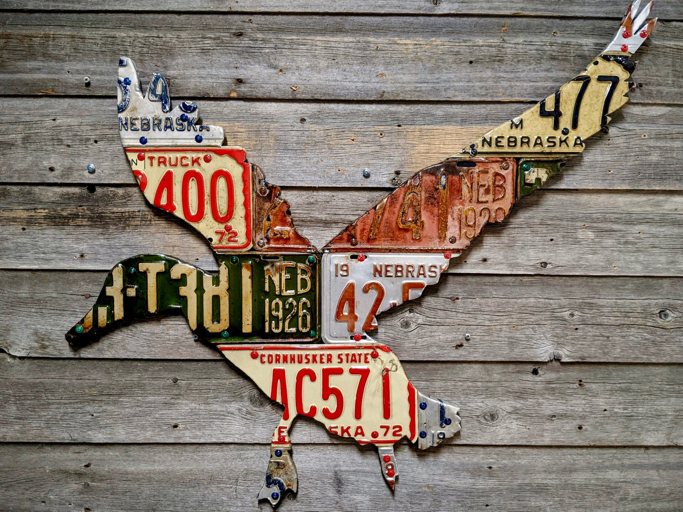 Nebraska Duck License Plate Art