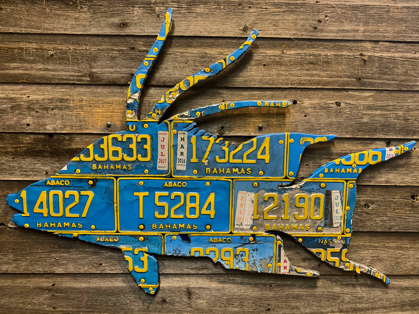 Bahamas Hogfish License Plate Art