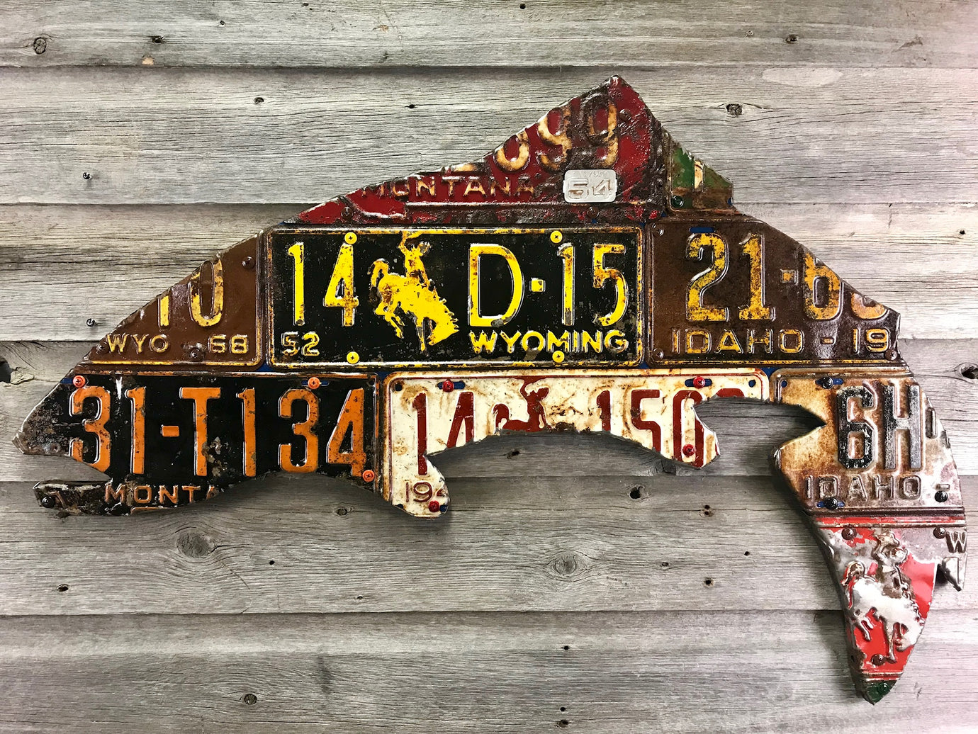 Antique Mixed Western State Trout License Plate Art