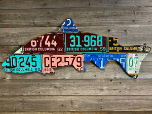 British Colombia Steelhead License Plate Art