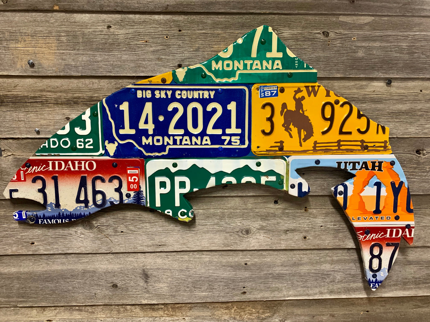 Mixed Western States Trout License Plate Art