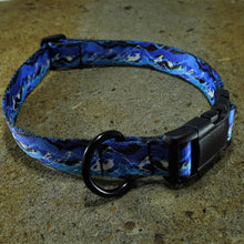 Dog Collar  Lemhi  Mtn Range