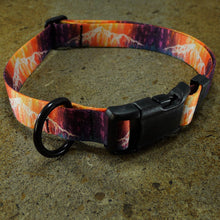 Dog Collar Lone Peak Big Sky Montana Heather Rapp