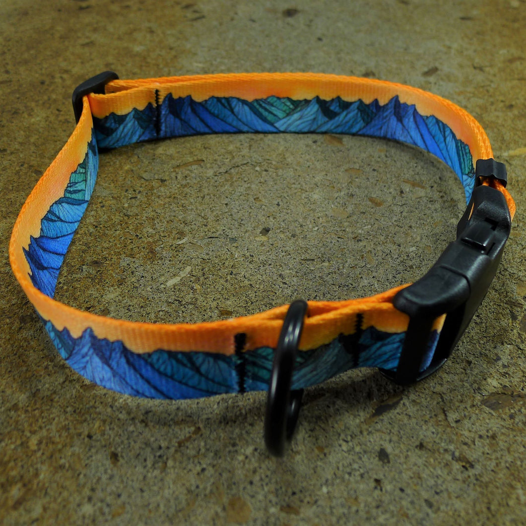 Dog Collar The Grand Teton Sydni Day
