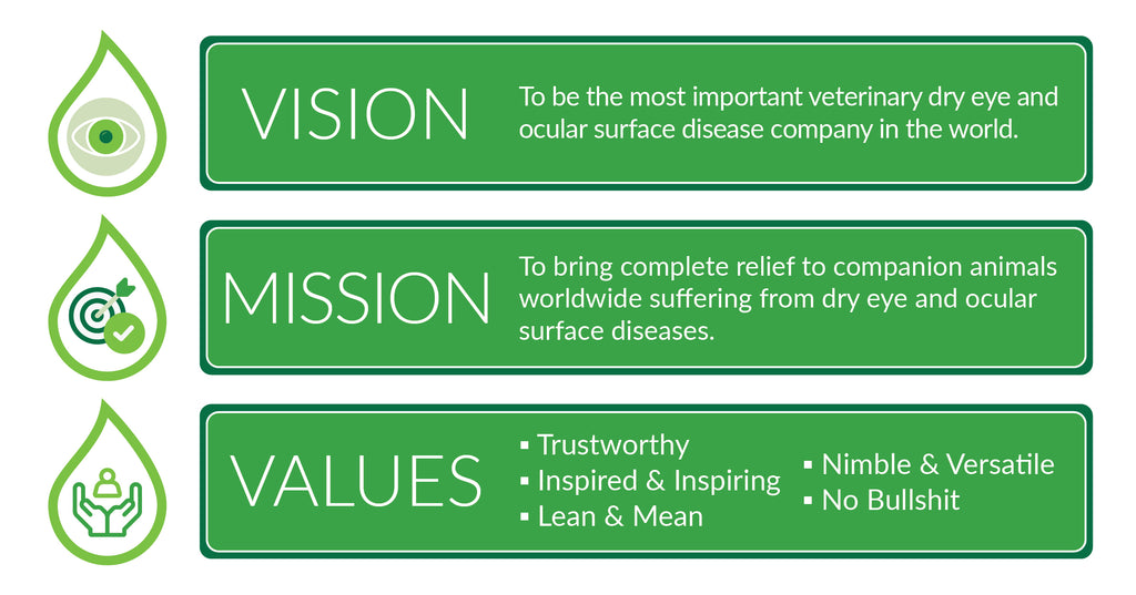 Mission, Vison and values