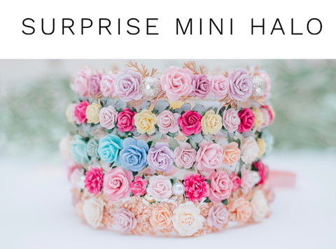 Surprise Spring Mini Halo